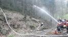 2012-04-21 Waldbrandübung