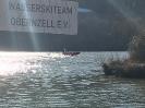 2019-02-23 Einsatz Baum in Donau_2