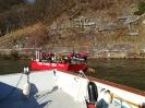 2019-02-23 Einsatz Baum in Donau_4